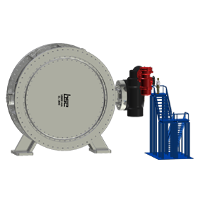 Double Disc Butterfly Valve